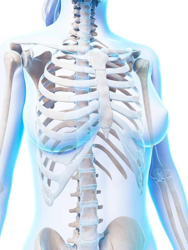 Osteopatia a Girona